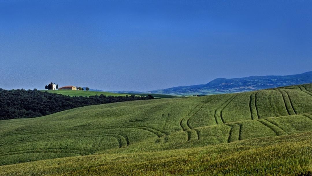 tuscany-field-2001-1080