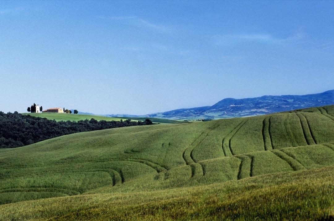 TuscanyField-2001-Final-1080
