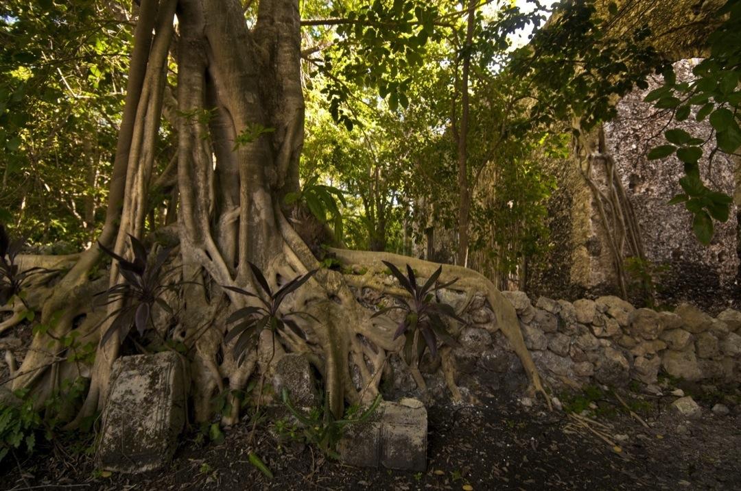 hacienda-uyamon2467-1080