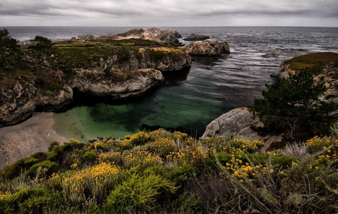 POINT-LOBOS-5308-1080