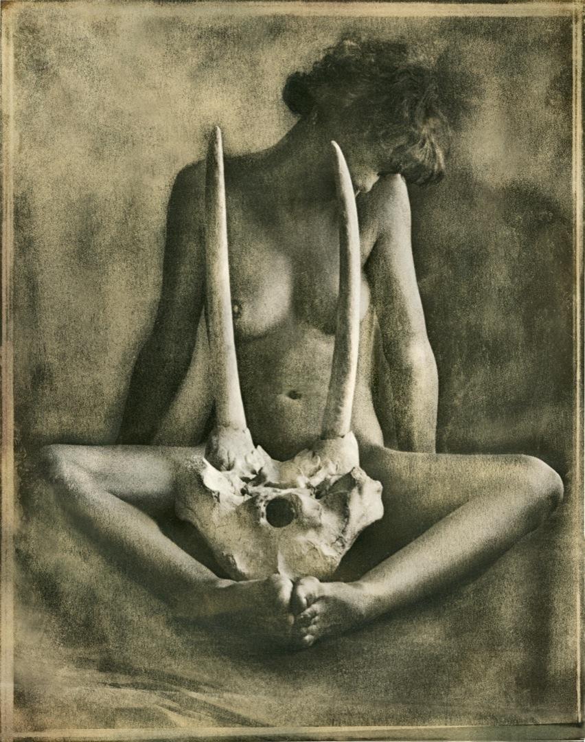 feedra-skull-1080